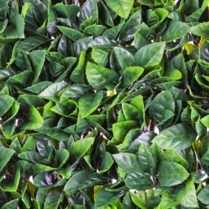 Gardenia Leaf Trellis