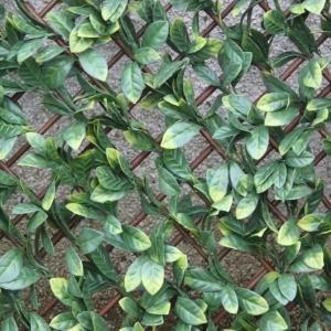 Laurel Leaf Trellis