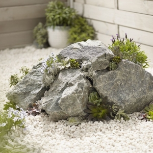 Forest green rocks