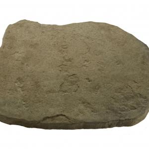Random Stepping stone Rustic Sage