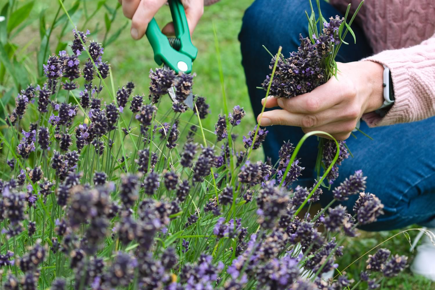 6 top tips for making the most of your garden during Autumn
