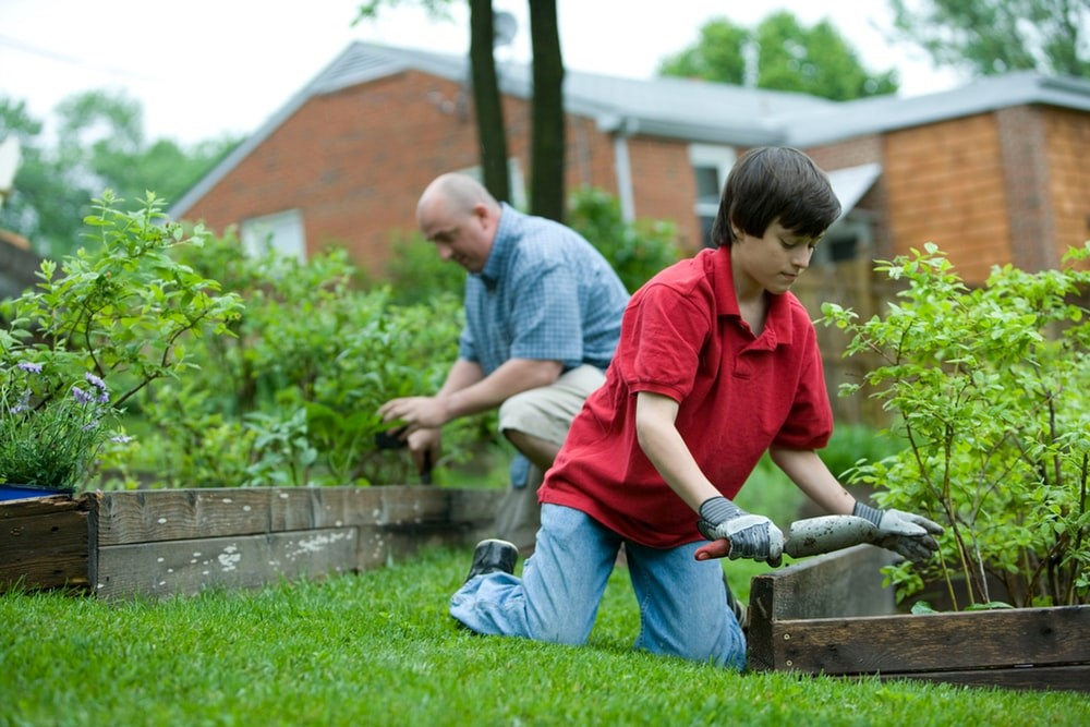 5 reasons why gardening is great for your health and wellbeing